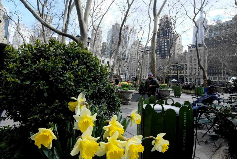 New York gezi günlüğü